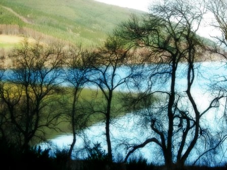 The dancing trees at Loch Ness